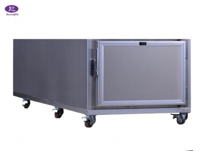 Morgue Refrigerator one room RD-1A