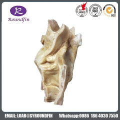 Dissection the larynx silicone specimens for medical teaching with  Long Service Life