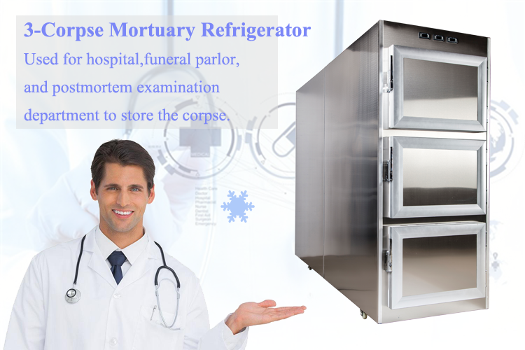 Mortuary refrigerator from Roundfin